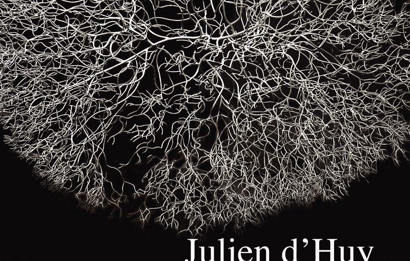 Cosmogonies, La préhistoire des mythes, de Julien d'Huy